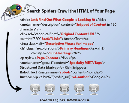 SEO HTML Crawled by Spiders